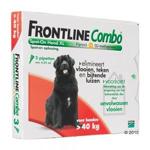 Frontline Combo XL Hond